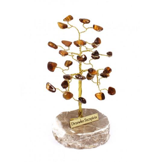 Drzewko Szczęścia - Tygrysie Oko