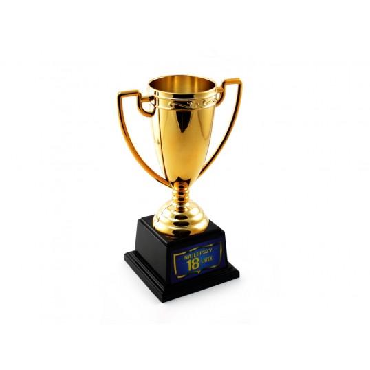 Puchar - Najlepszy 18-latek