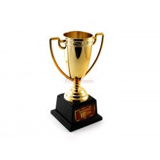 Puchar - Najlepsza 18-latka