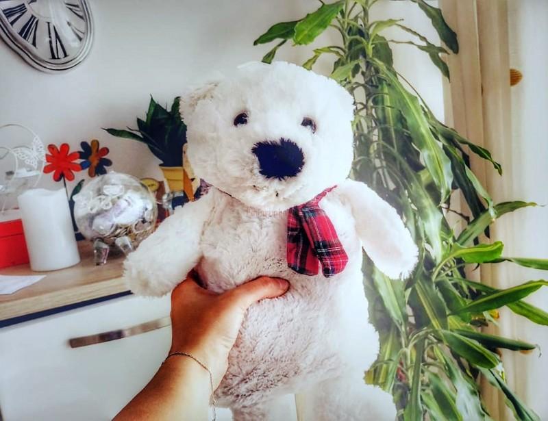 To piękny prezent urodzinowy dla dziewczyny, którym ją oczarujesz. Pluszowy termofor w kształcie misia to znakomity pomysł na zimowe wieczory i chłodne jesienne popołudnia.
